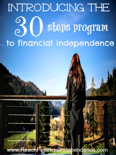 Introducing the 30 steps program to financial independence