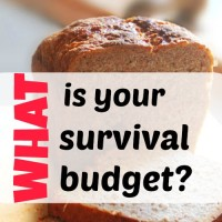What is your survival budget?