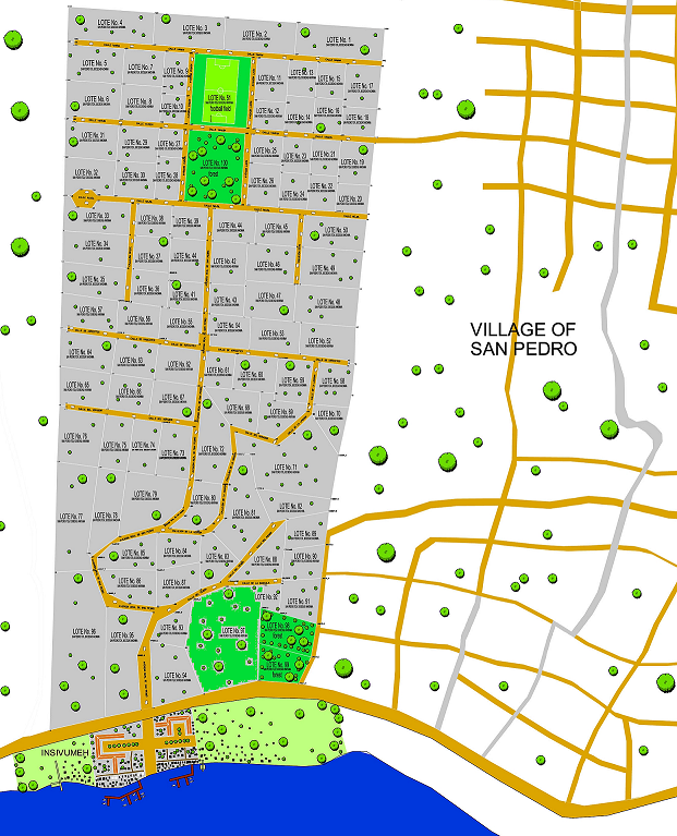 That is the map of the project with the plots and the adjacent village. You can find an interactive map with sizes and prices here.