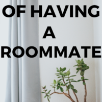 The price of having a roommate. I have almost always lived with roommates and some of them were a pleasure to be around, while others were a real pain. With some we would make dinner together, or go out, and with other we wouldn't talk for months. Obviously the first is nice while the later isn't that great.#roommate #budgeting #renting
