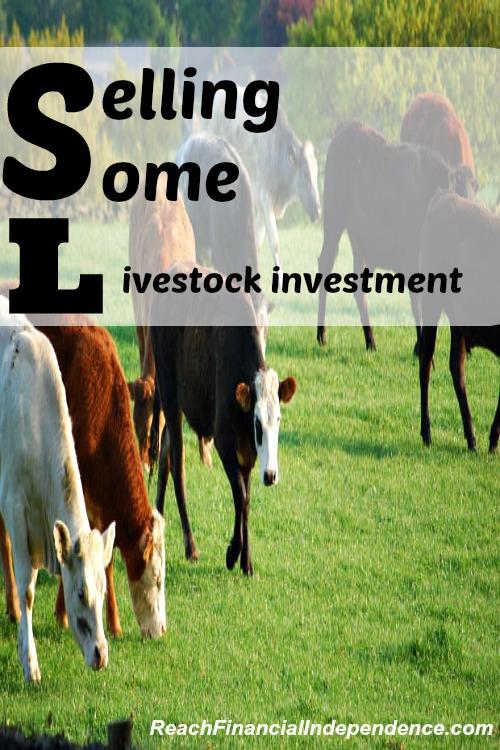 livestock investment