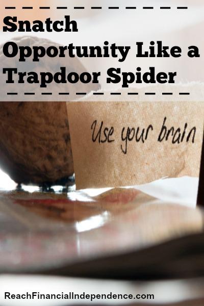 Snatch Opportunity