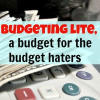 Budgeting lite, a budget for the budget haters