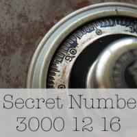 My Secret Number